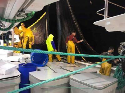 Una noche de pesca en el buque de cerco Francisco y Caridad de Sanlúcar de Barrameda - CEPESCA - Confederación Española de Pesca