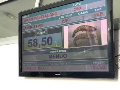 Crónica día de pesca de arrastre en buque de fondo Galán Castellano, acompañada de algunas fotos de la misma, Javier Garat | CEPESCA
